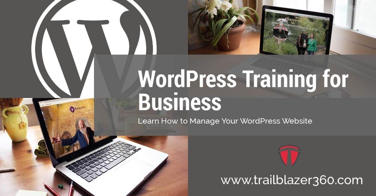 WordPress training for business